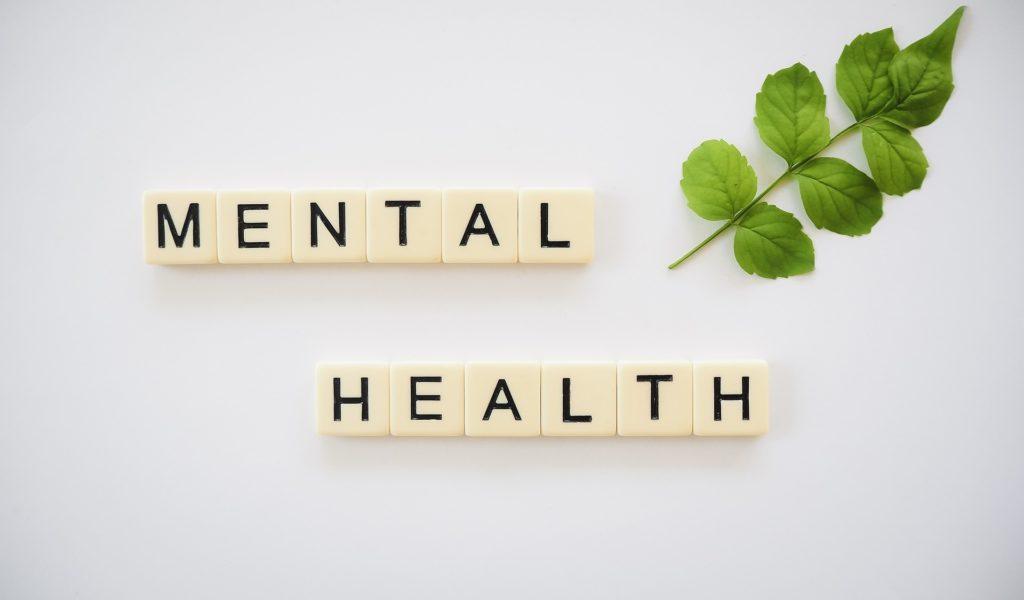 santé mentale : la randonnée pour l'esprit, julien-manival