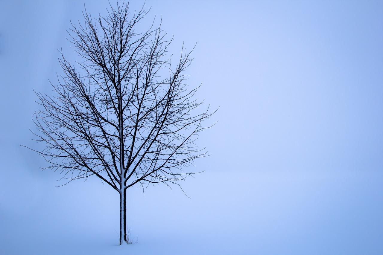 courir running hiver manival julien
