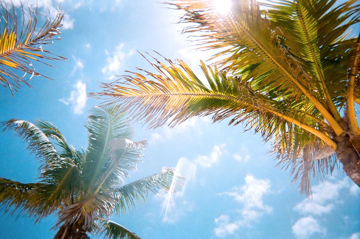 Floride, Miami - Julien Manival