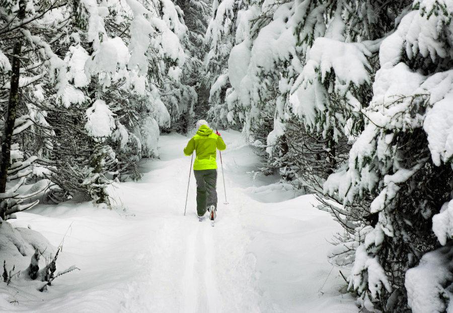 Julien Manival, ski de fond